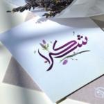 Rowida Ali avatar