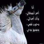 حنان المسلم avatar